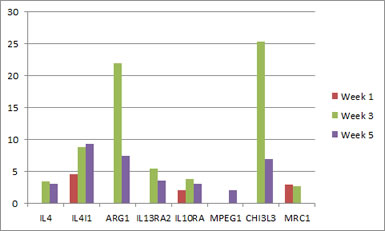 macrophage-microarray-gene-graph